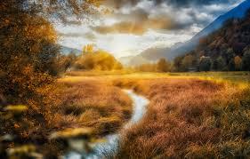 Какие комнатные цветы можно выращивать на солнечной стороне?