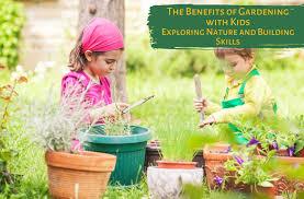 Зимний лук посадка осенью из севка в открытом грунте