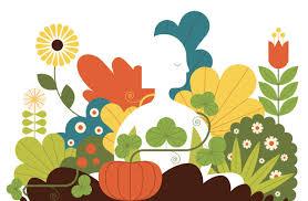 Выращиваем из косточки в домашних условиях