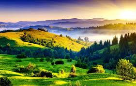 Как вы думаете стоит ли выращивать диких птиц в неволе?